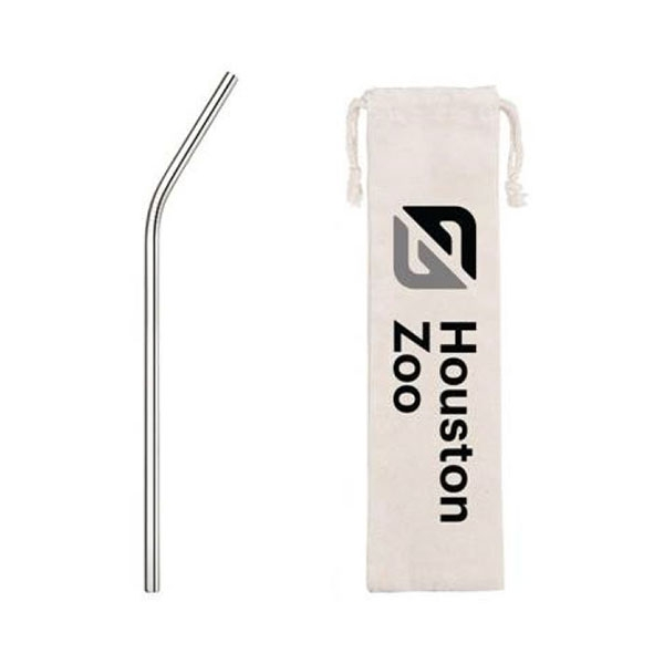 STAINLESS STRAW 10 INCH WITH BAG